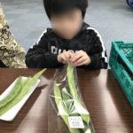 野菜の袋詰めをする男の子